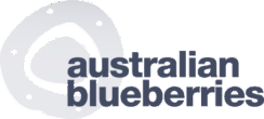 logo-blueberries